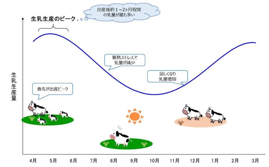 生乳生産のピーク