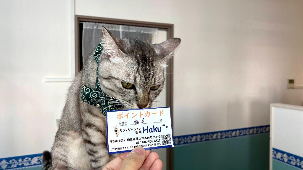 リラクゼーション整体Haku